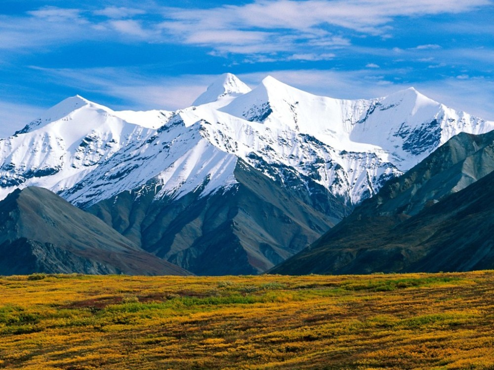 denali-national-park-1024x768